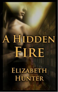 Did I Notice Your Book Blogfest: A HIDDEN FIRE